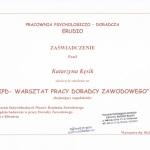 Warsztat pracy doradcy zawodowego. Psycholog Lublin